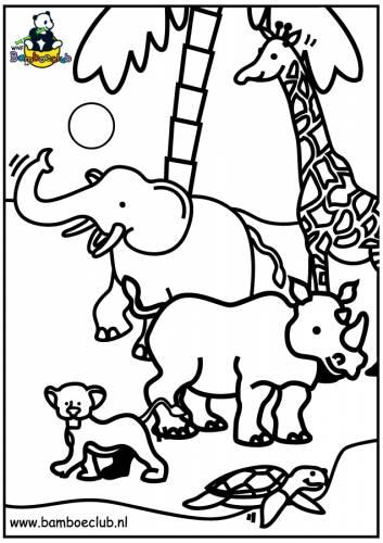 Kleurplaten Giraffen En Olifanten.Wilde Dieren Olifant Giraf Neushoorn Wnf Bamboeclub Dieren