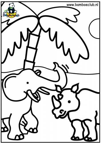 olifant neushoorn wnf bamboeclub dieren