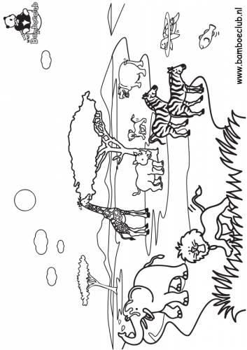 Olifant Giraf Leeuw Wnf Bamboeclub Dieren