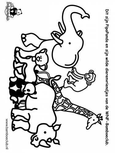 Kleurplaten Dieren Bamboeclub.Wilde Dieren Olifant Giraf Neushoorn2 Wnf Bamboeclub