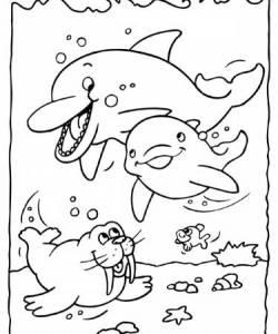 dolfijn dieren kleurplaten kleurplaten print een