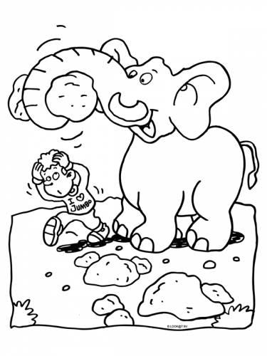 olifant met een grote steen olifant dieren