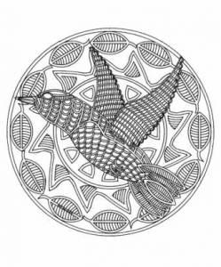 Kleurplaten Dieren Vogels.Vogels Mandala Mandala Dieren Mandala Kleurplaten Print Een
